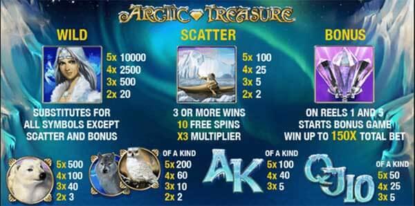 รีวิวเกม Arctic Treasure